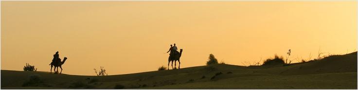 jaisalmer - thar desert - india